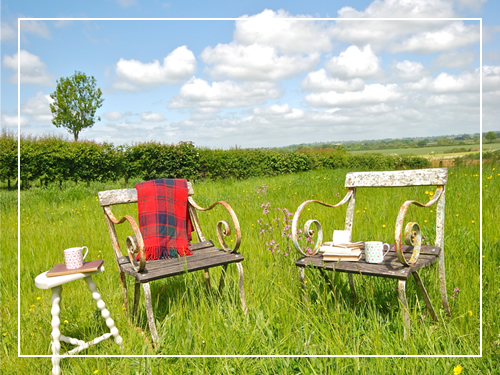 Picnic chairs in the meadow